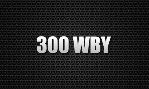 300 WBY