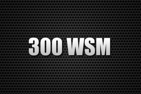 300 WSM
