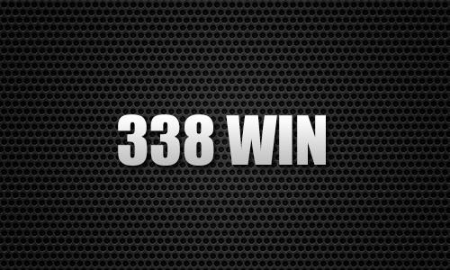 338 WIN
