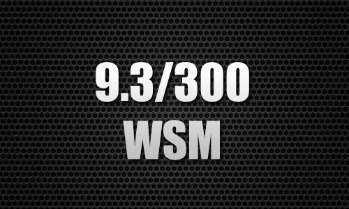9.3/300 WSM