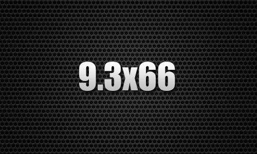 9.3X66