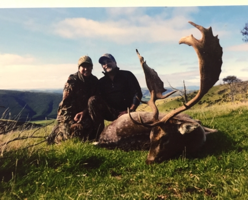 Ricks Fallow Buck New Zealand May 2018