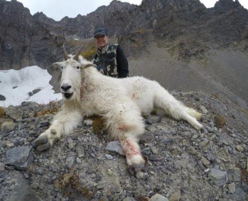 Tamara's Goat Taken with Accuflite Arms RT100 6.5x284;